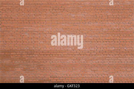 Red brick wall background  Vector illustration  Brick wall