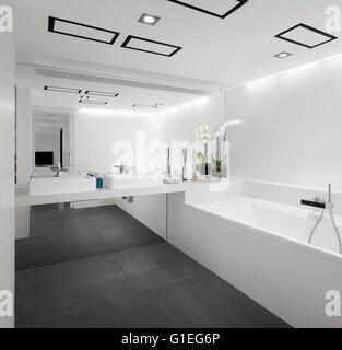 Modernes Badezimmer mit weißen Features und schwarzer Boden ...